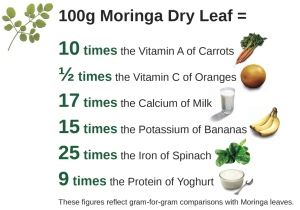 moringa-dry-leaf-values